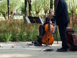 Radeau musical