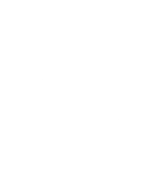 logo C blanc home page.png