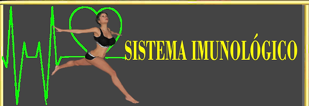 sexy3d.net- SISTEMA IMUNOLOGICO.png