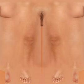 skin fem 072021 (3).png