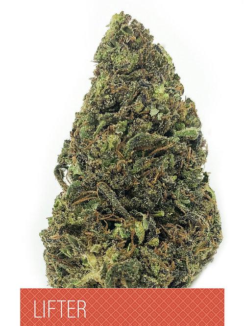 Lifter CBD Flower- 15.27% CBD