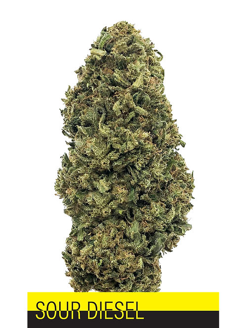 Sour Diesel CBD Flower 12.6%