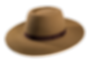 Sombrero de campo Pampa Fielto