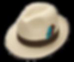Sombrero panamá de verano
