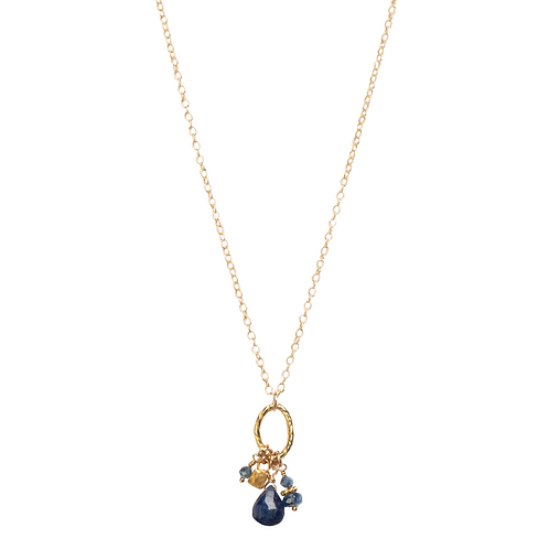 Kyanite and Sapphire Cham Necklace