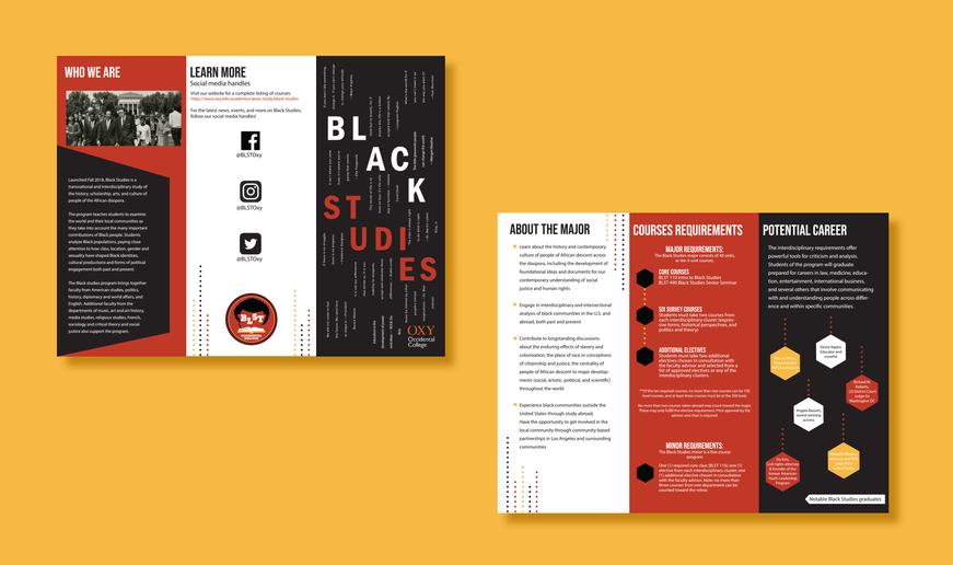 BLST Program Brochure