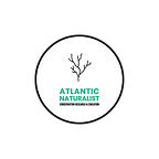 Atlantic Naturalist Logo-04.png