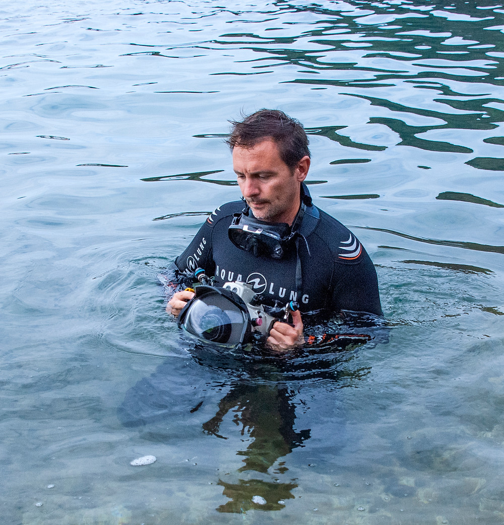 Nuno is an award winning conservation photographer and author of several scientific publications in Marine Ecology, including 3 books.  His works at Atlantic Naturalist focuses on scientific outreach while studying marine biodiversity in the northeastern Atlantic region.