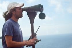 Torrão - Whale Spotter