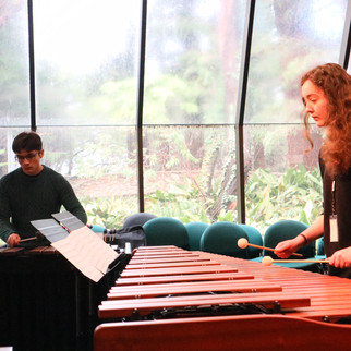Wei-Chen's ensemble rehearsing 'Levitan Quartet'