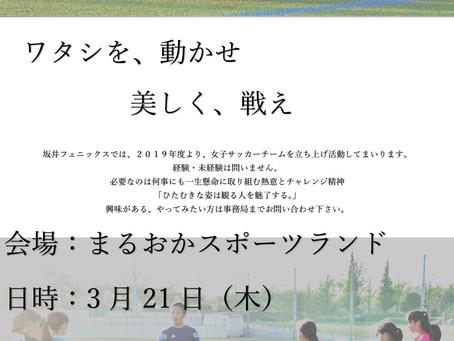 坂井フェニックスレディース 合同練習会&体験練習会