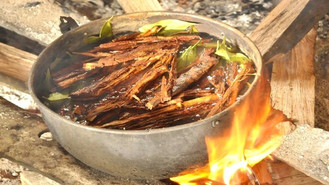 How the Plants Contained Within an Ayahuasca Brew Amalgamate to Create a Powerful Spiritual Experien