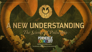 Q&A Following the Screening of ANU at Psychedelic Science 2017