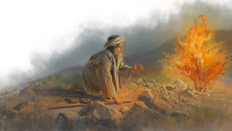 The Bible's Moses Was On DMT Says Hebrew Professor