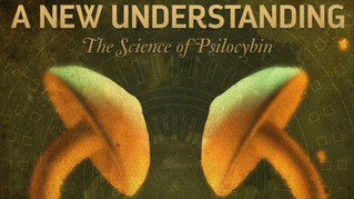 A New Understanding: The Science of Psilocybin - French Subtitles
