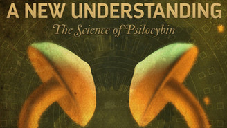A New Understanding: The Science of Psilocybin - Spanish Subtitles