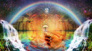 Protecting The Human Rights Of Individuals Who Use Psychedelics
