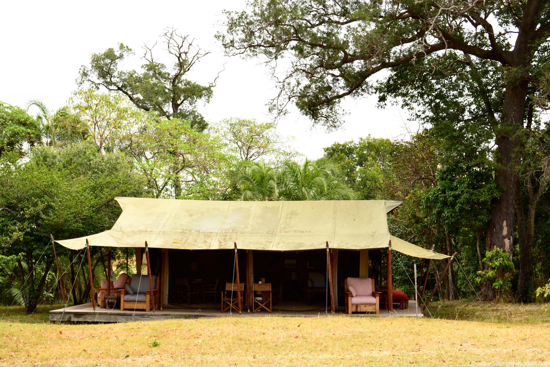 Enkewa Camp, Masai Mara