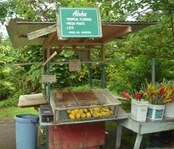 Unmanned fruit stalls en route Hana