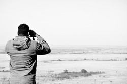 Looking for the wildebeest...