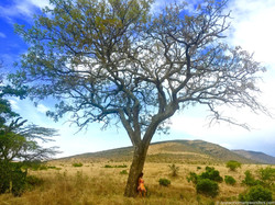 Falling in love with Africa...