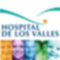 Logos Hospital de los Valles-03.png