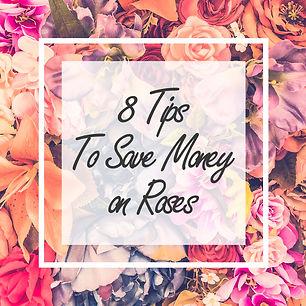 8 tips for saving money on roses.jpg