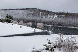 vue en hivers sur le lac et forêts