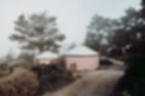 NAST8084.jpg