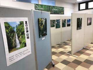 夏の白神山地・特別展示を開催中!