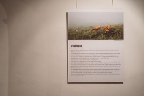 Photo Exhibition 'JEJUSUM'