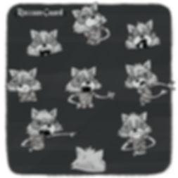 RaccoonGuard_ExpressionSheet-bg-IG.jpg