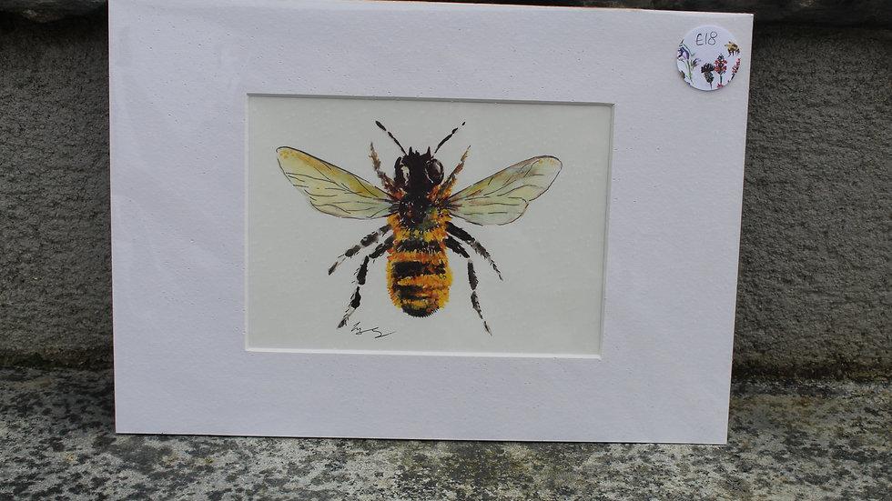 Framed Bee Print- Reserved