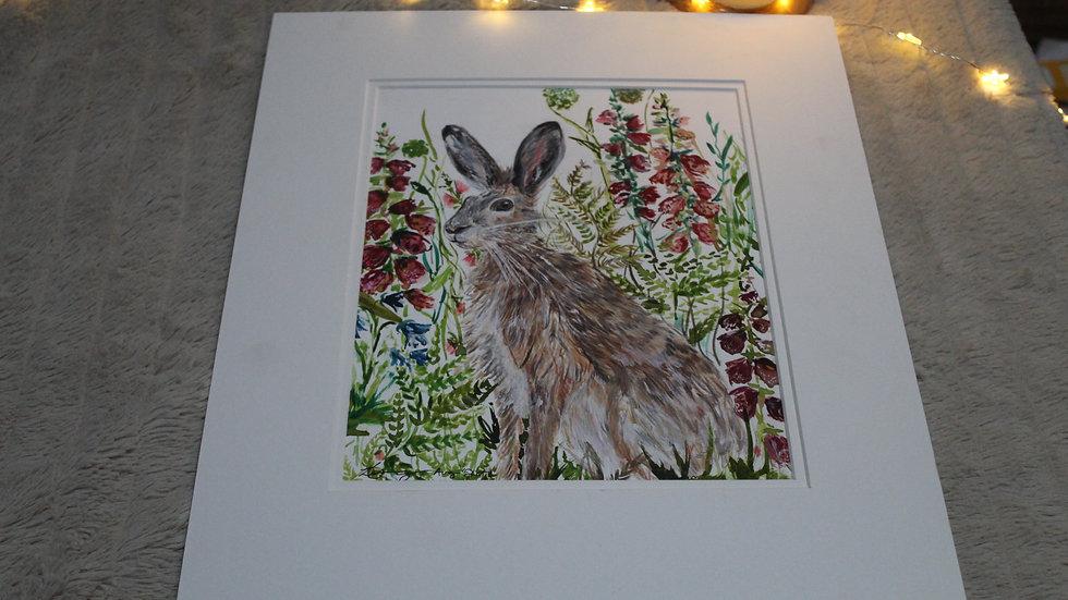 Original Hare Watercolour Painting