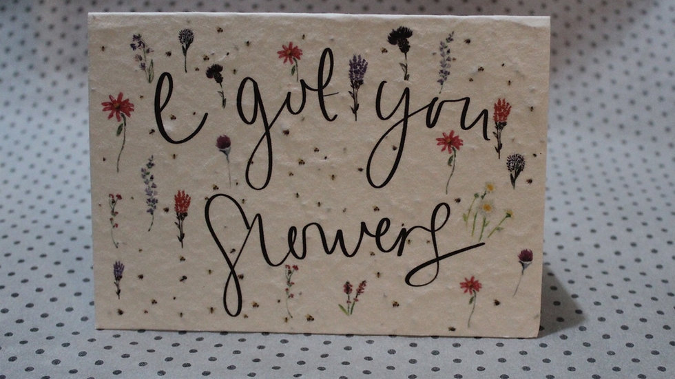 I Got You Flowers - plantable wildflower seed card