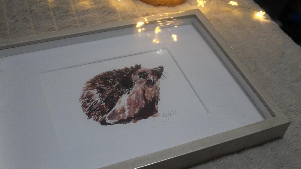 Framed Hedgehog Print