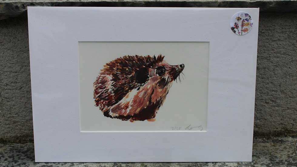Hedgehog print mounted
