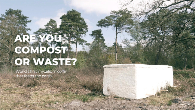 Are you compost or waste?