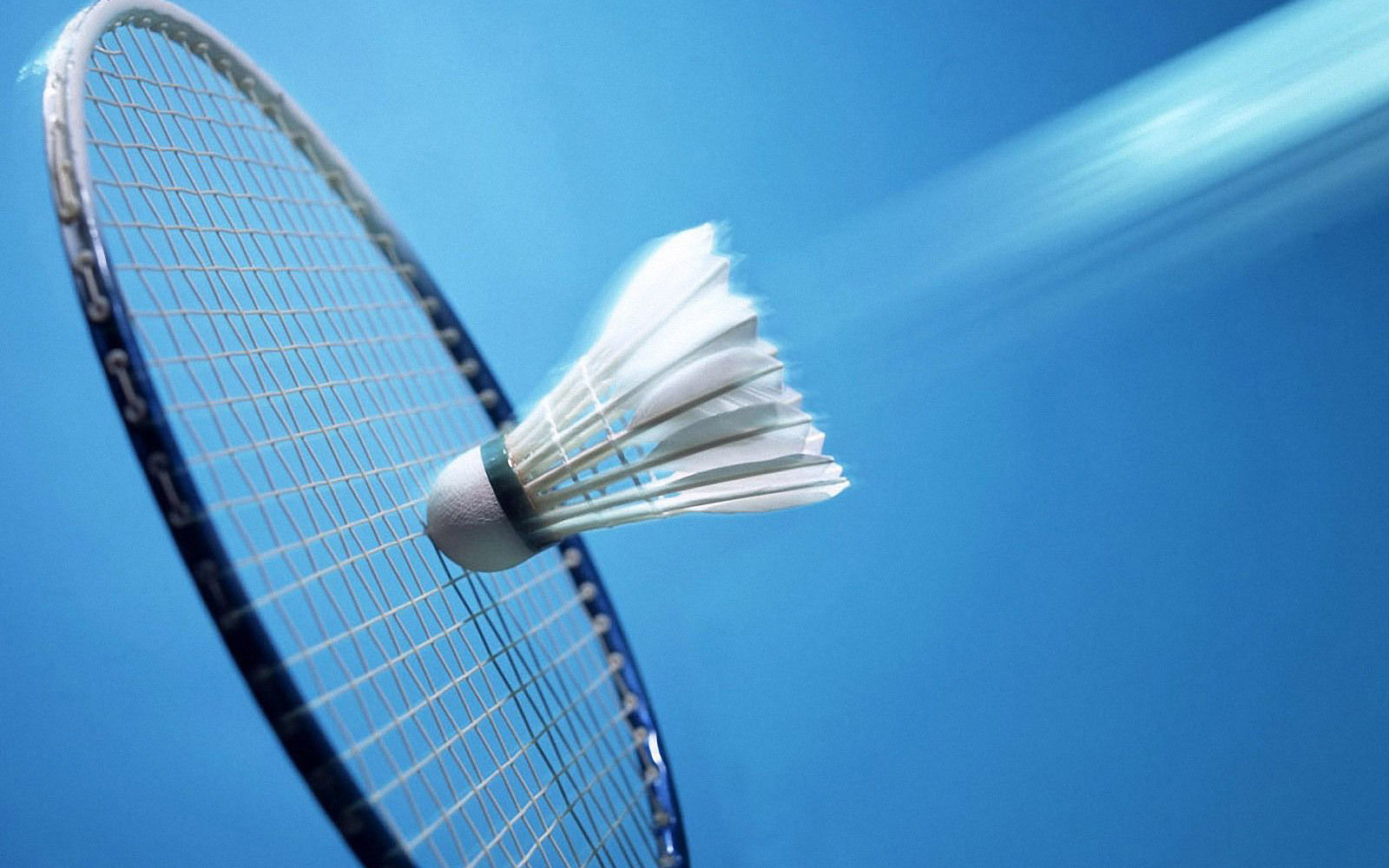 Badminton -Court 2 (mat)
