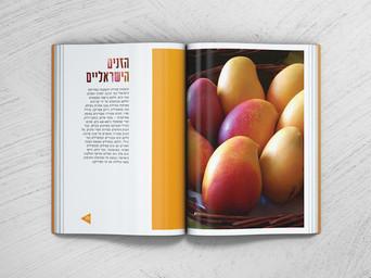 עיצוב שער לזנים הישראלים