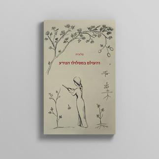 עיצוב כריכה לספר שירה מאת סלעית לזר