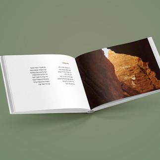 הצצה לעימוד פנימי של ספר שירה וצילומים דיתי אבניאלי