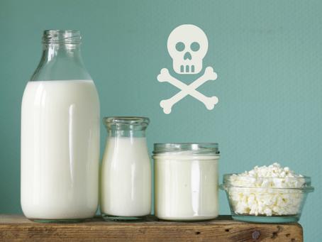 Szok! W Polsce to kamuflują przez niewiedzę: Mleko krowie to biała śmierć!