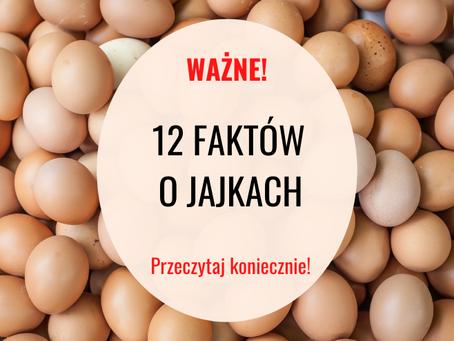 12 Faktów O Jajkach, O Których Nie Chcą Żebyś Wiedział!