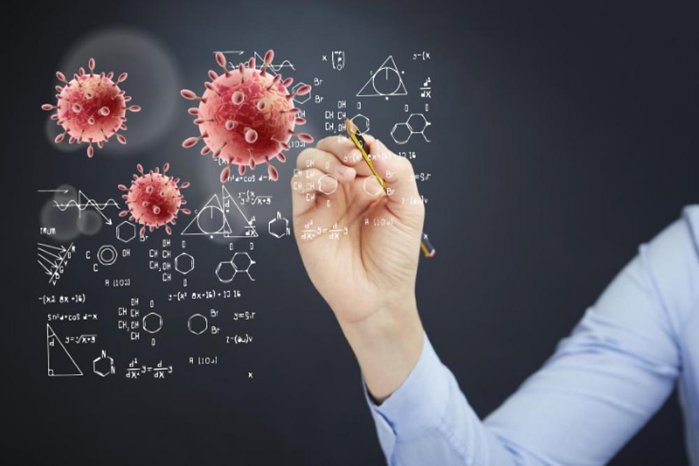 anatomia wirusa