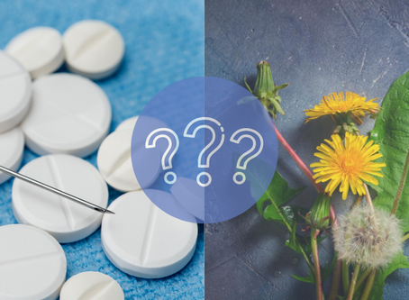 Chemia czy mniszek lekarski?