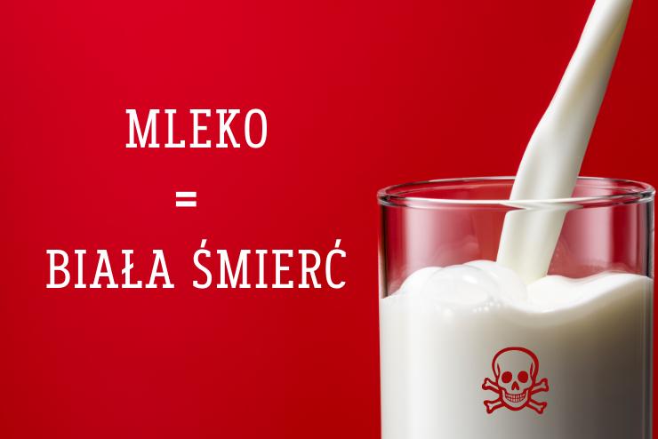 prawda o krowim mleku