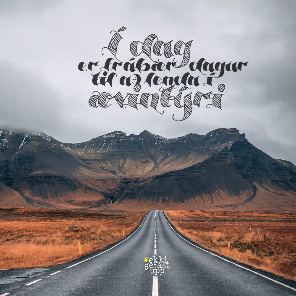 Í dag er frábær dagur til að lenda í ævintýri.