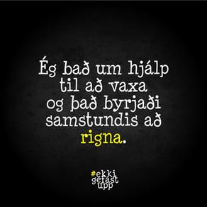 Ég bað um hjálp til að vaxa og það byrjaði samstundis að rigna.