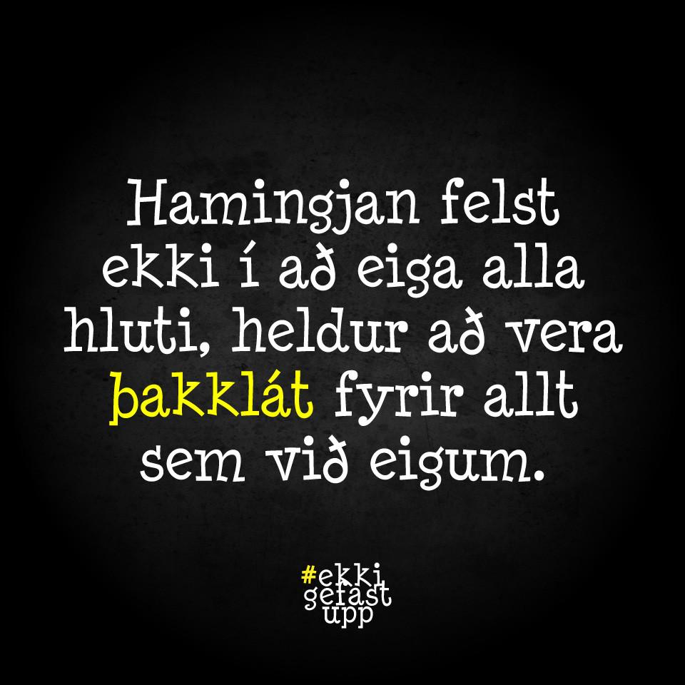 Hamingjan felst ekki í að eiga alla hluti, heldur að vera þakklát fyrir allt sem við eigum.